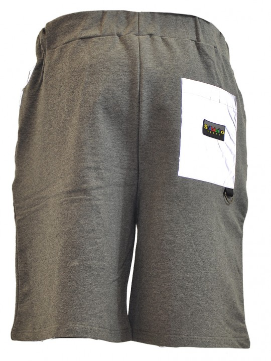Place-FT-shorts-gray-back